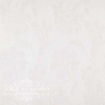 VANISH 01 SWAN