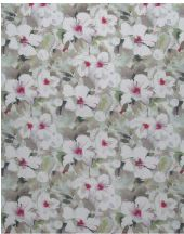 Lotus Pearl
