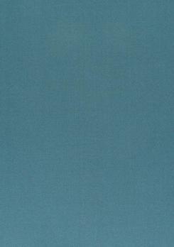 Daylight - Ткань Vion Denim