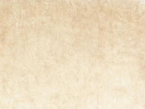 Ткань Antique 2331/378 - Espocada