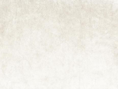 Ткань Antique 2331/568 - Espocada