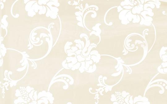 5 Авеню - Ткань R 214 Taffetas 2496/1 Bianco