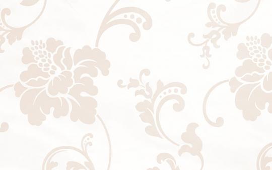 5 Авеню - Ткань R 215 Taffetas 2509/1 Bianco