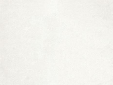 Ткань E.Degas 2673/10 - Espocada