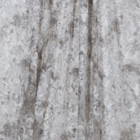 Daylight - Ткань 4241757-01 Mocсa