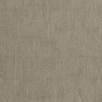 Darkness Taupe