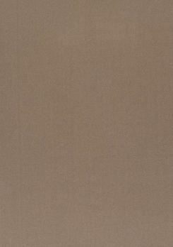 Daylight - Ткань Vion Fossil