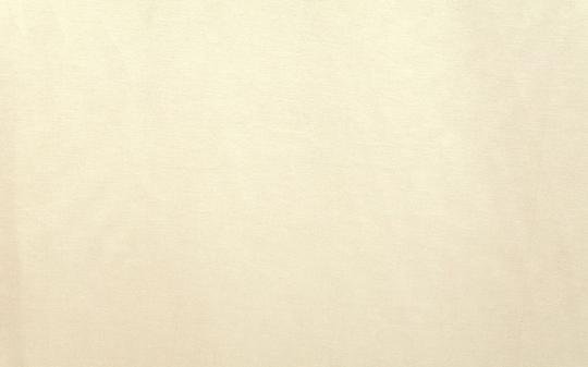 Ткань Borneo 01 скатертная - 5 Avenue / 5 Авеню