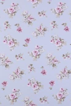 Blossom Small 02
