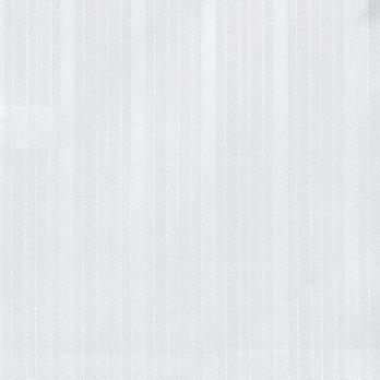 Cameo Fibula 06